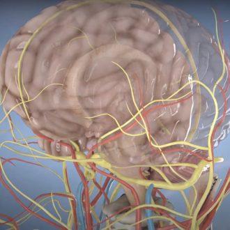 Лікування хвороби Альцгеймера