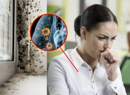 АСПЕРГІЛЬОЗ Легень та центральної нервової системи (ЦНС)